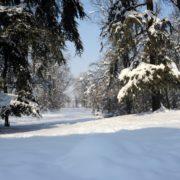 Il parco immerso nella neve